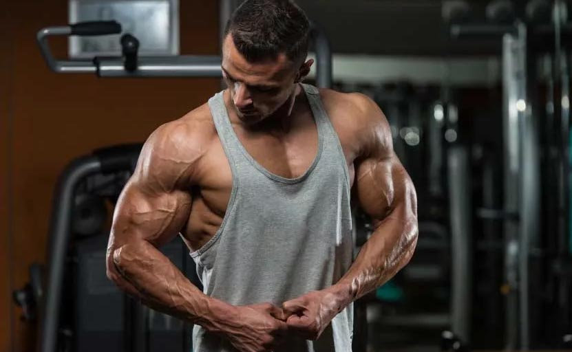 dry muscle mass supplementation