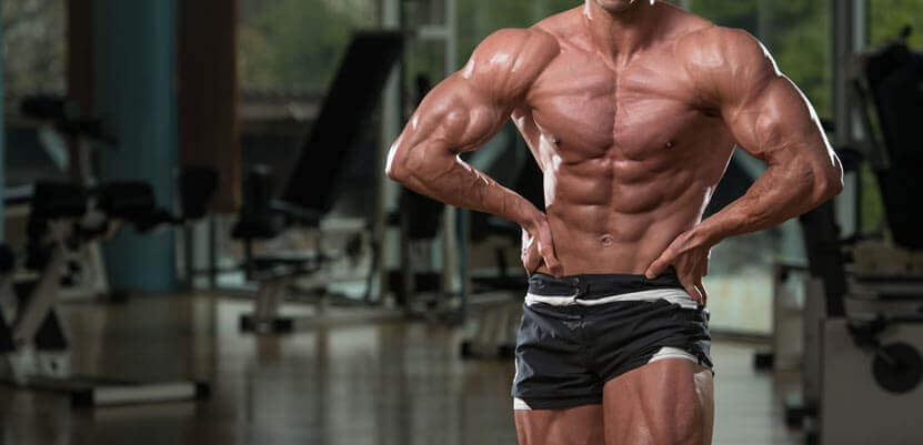 how to build dry muscle mass